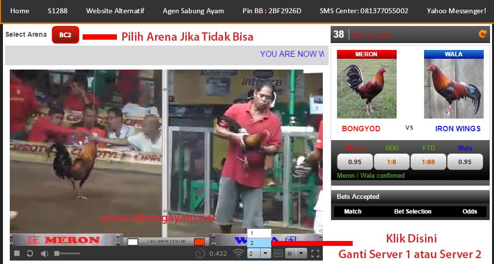 Cara Membuka Video Sabung Ayam Live Filipina