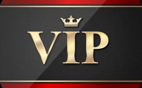 VIP Member di Agen Sabung Ayam Online Indonesia