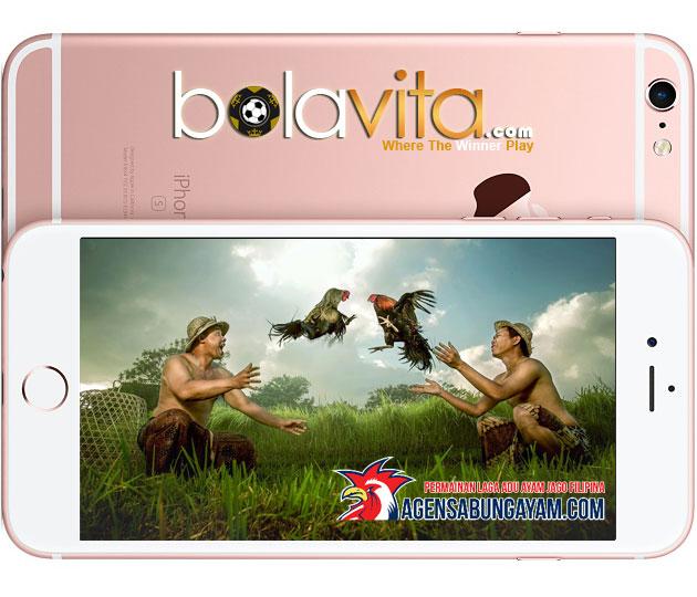 Agen Sabung Ayam Online Android PERTAMA Indonesia