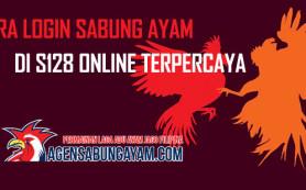 Cara Login Sabung Ayam di S128 Online Terpercaya