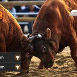 Jadwal Resmi Bullfight CF88INDO14 Januari 2018