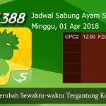 Jadwal Cockfight SV388 01 April 2018
