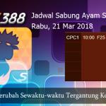 Jadwal Taruhan Sabung Ayam SV388 21 Maret 2018