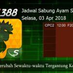 Jadwal Adu Ayam SV388 03 April 2018