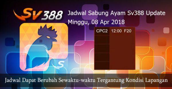 Jadwal Taruhan Ayam SV388 08 April 2018