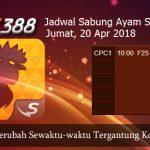 Jadwal Taruhan Sabung Ayam SV388 20 April 2018