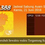 Jadwal Daftar Sabung Ayam SV388 21 Juni 2018