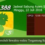 Jadwal Arena Sabung Ayam SV388 22 Juli 2018