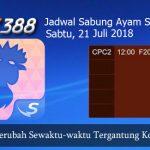Jadwal Sabung Ayam Update SV388 21 Juli 2018