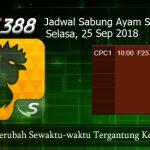 Jadwal Adu Ayam SV388 25 September 2018