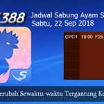 Jadwal Sabong Ayam SV388 22 September 2018