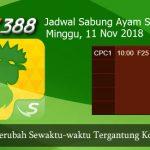 Jadwal Live Sabung Ayam SV388 11 November 2018