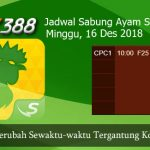 Jadwal Sabung Ayam Update SV388 16 Desember 2018