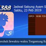 Jadwal Taruhan Sabung Ayam SV388 23 Februari 2019
