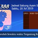 Jadwal Daftar Sabung Ayam SV388 20 Juli 2019