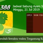 Jadwal Sabung Ayam Update SV388 21 Juli 2019