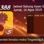 Jadwal Taruhan Sabung Ayam SV388 16 Agustus 2019