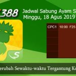 Prediksi Jadwal Sabung Ayam SV388 18 Agustus 2019
