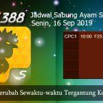 Jadwal Taruhan Sabung Ayam SV388 16 September 2019