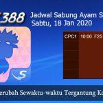 Jadwal Tarung Cockfight SV388 18 Januari 2020