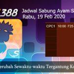 Jadwal Update Sabung Ayam SV388 19 Februari 2020