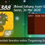 Jadwal Ayam SV388 30 Maret 2020