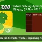 Jadwal Judi Ayam SV388 29 November 2020