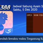 Jadwal Resmi Laga Ayam SV388 5 Desember 2020