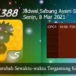 Jadwal Resmi Sabung Ayam SV388 8 Maret 2021