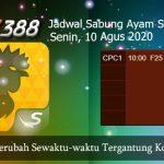 Jadwal Tarung Ayam SV388 10 Agustus 2020