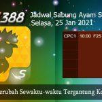 Prediksi Jadwal Sabung Ayam SV388 25 Januari 2021
