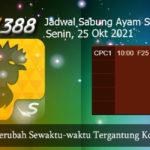 Jadwal Adu Ayam SV388 25 Oktober 2021